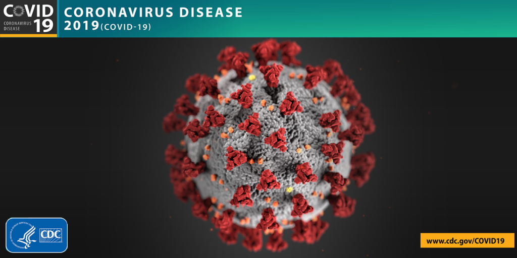 Coronavirus disease molecule